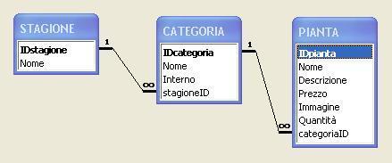2003_fioreria1